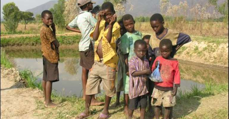 Fish farmed in these ponds help keep the children of Zomba West healthy