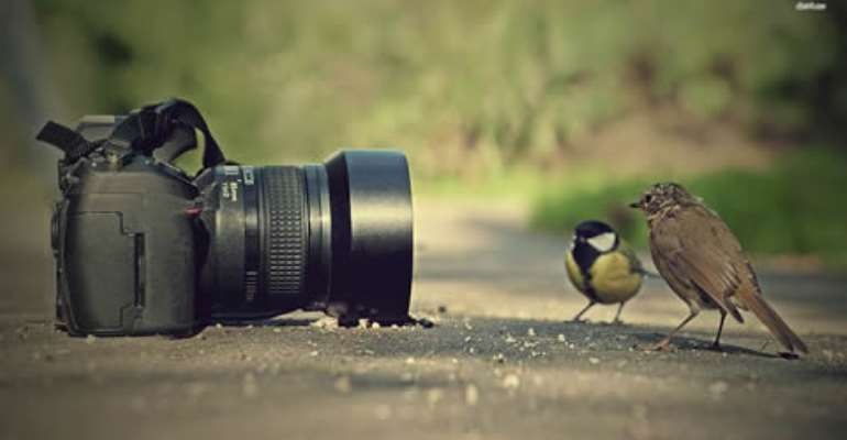 The modern business of photography