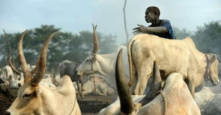 A herdsman from the Dinka tribe at a cattle-camp near south Sudan's town of Rumbek on November 13, 2011.  By Tony Karumba (AFP/File)