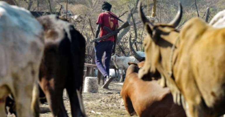 A man carrying a gun walks past cattle in the town of Udier, South Sudan in March 2019.  By SIMON MAINA (AFP/File)