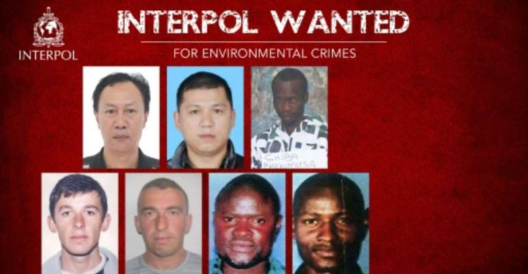A picture released by Interpol shows the seven individuals wanted for alleged environmental crimes.  By - (INTERPOL/AFP)
