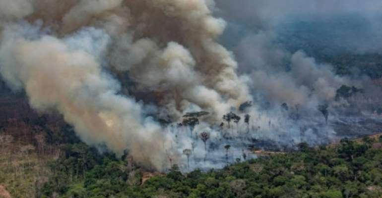 Amazon fires have drawn comparison to African rainforest fires, but experts say that is risky.  By Victor MORIYAMA (GREENPEACE/AFP)