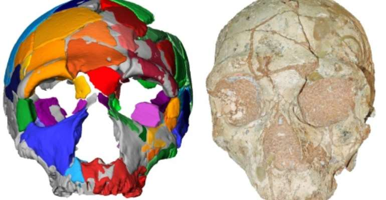 An international team of researchers used state-of-the art computer modelling and uranium dating to re-examine the two skulls.  By Katerina HARVATI (Eberhard Karls University of Tuebingen/AFP)