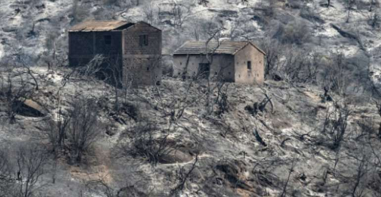 Burned houses stand amidst charred trees, on what used to be a forested hillside in Algeria's Kabylie region.  By Ryad KRAMDI (AFP)