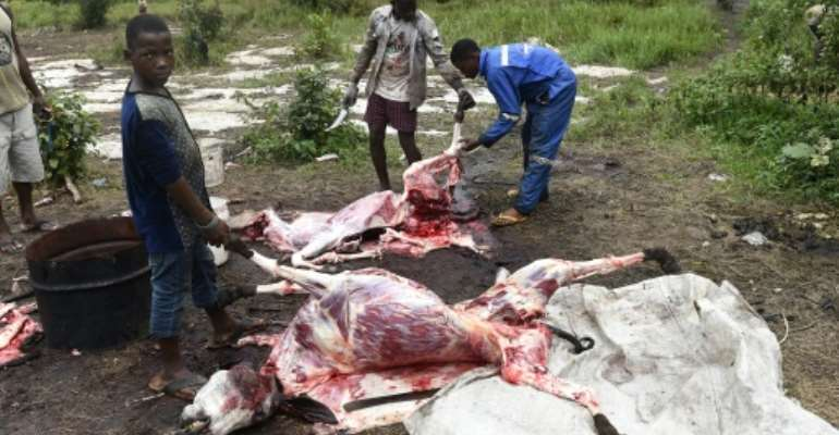Butchers at Ughelli in southern Nigeria's Delta state slaughter donkeys and skin their hides for export to China to be boiled down into a soluble gel --