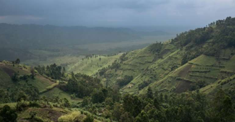 Crops border Virunga National Park in DR Congo, where the goverment faces a daunting challenge to protect the rainforest.  By ALEXIS HUGUET (AFP)