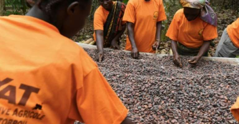 Ivory Coast and Ghana together produce 60 percent of the world's cocoa.  By ISSOUF SANOGO (AFP)