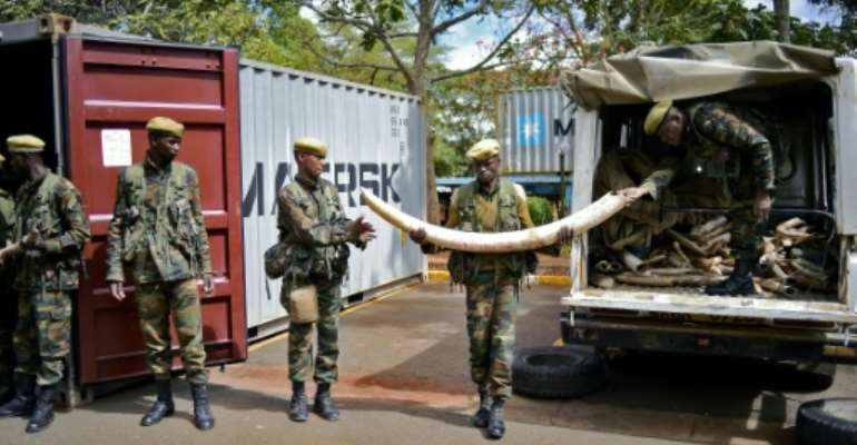 Soldiers move confiscated ivory to secure containers  at the Kenya Wildlife Services (KWS) headquarters in Nairobi, on April 15, 2016.  By Carl De Souza (AFP)