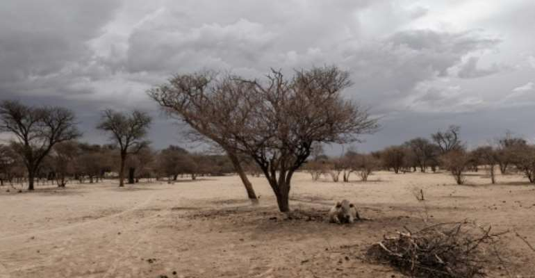 Namibia's government is impatient with the slow pace of land redistribution.  By GIANLUIGI GUERCIA (AFP)