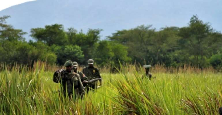 Park sources say at least 200 rangers have paid with their lives in attacks going back more than a decade.  By  (Virunga National Park/AFP/File)