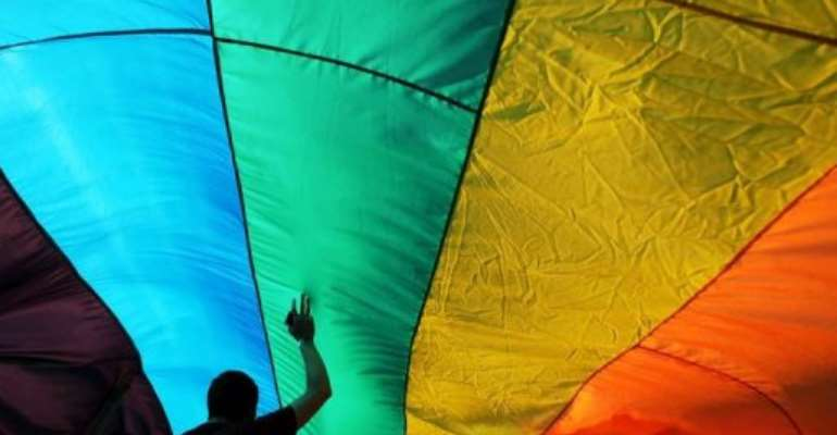 A demonstrator holds the rainbow flag during a Gay Pride parade.  By Nikolay Doychinov (AFP/File)