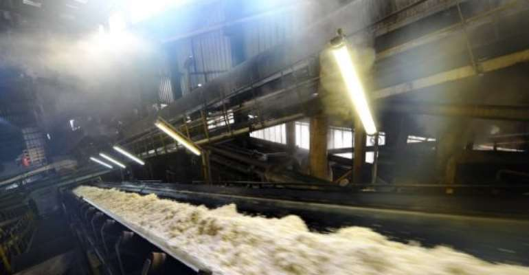 The pulp of sugar beets on a conveyor belt at a refinery in 2011.  By Philippe Huguen (AFP/File)
