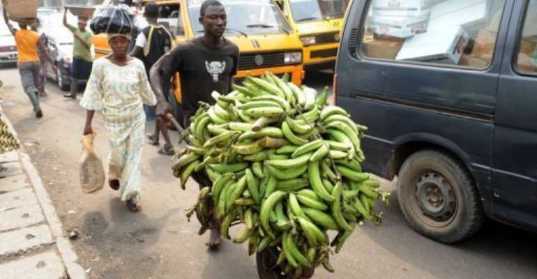 A man transports plantain bananas to a car park in Lagos today as workers suspended a five-day strike.  By Pius Utomi Ekpei (AFP)