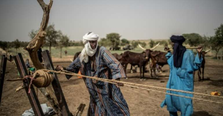 The impact of climate change has caused conditions in northern Nigeria to worsen.  By Marco LONGARI (AFP/File)