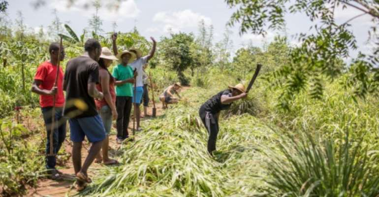 The programme aims to teach basic, traditional ways of agriculture to those who have forgotten or never known a life on the land.  By Yanick Folly (AFP)