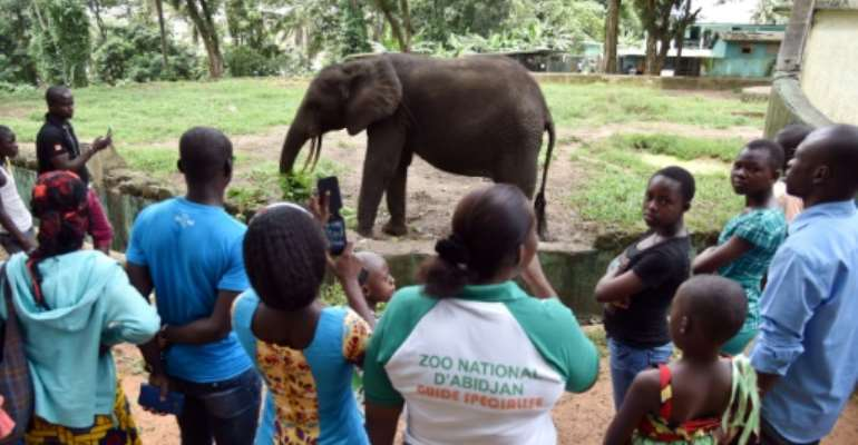 The zoo is struggling with rundown facilities and lack of funds.  By SIA KAMBOU (AFP/File)