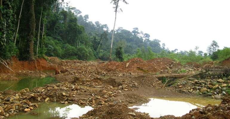 Celebrate World Biodiversity Day By Prioritising Atewa's Biodiversity, Not Its Bauxite