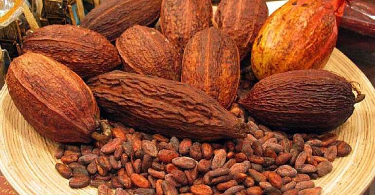 Government maintains cocoa producer price at GHC3,392