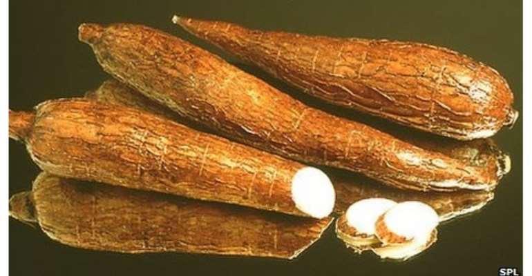 Ghana produced 13.5 million tons of cassava in 2010