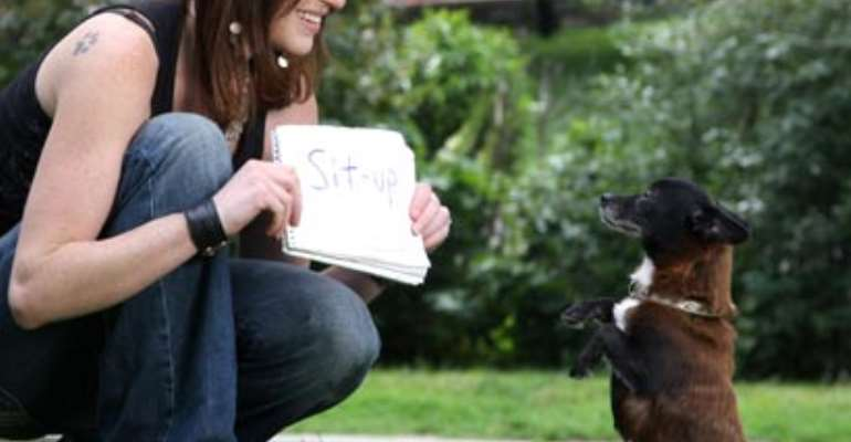 Woman teaches dog to read