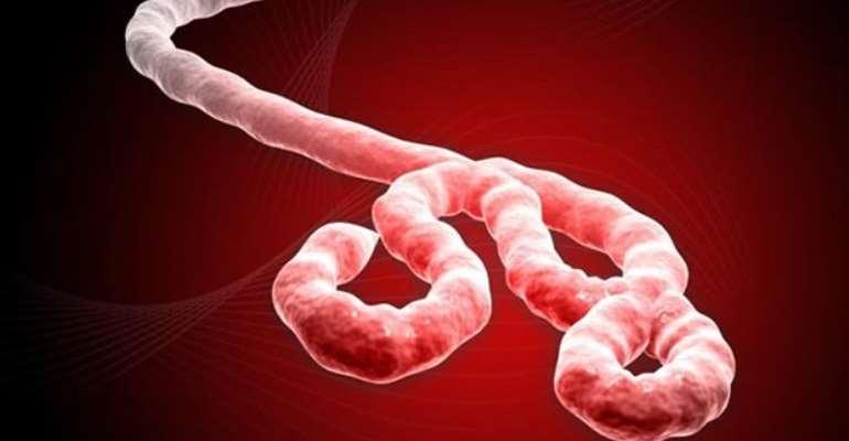 How Ebola Disease Got To Nigeria