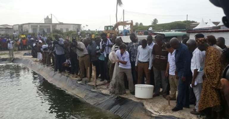 Mahama commissions shrimp farming project in Ada