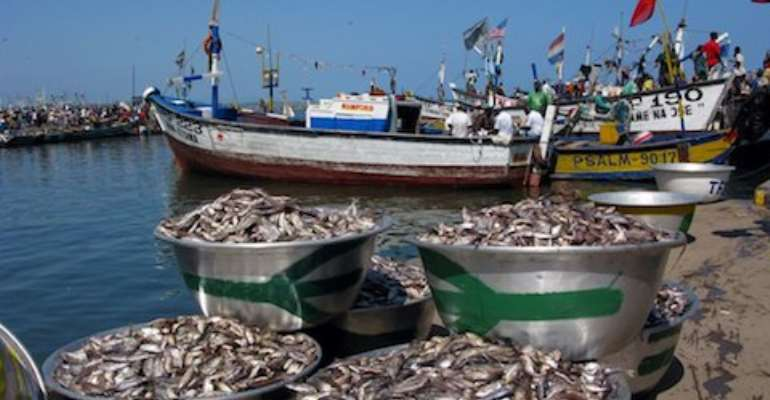 Journalists call for rigid enforcement of fisheries laws