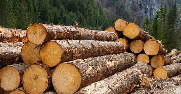 CSOs Alarmed: Ghana On The Verge Of Losing EU Timber Trade Opportunities