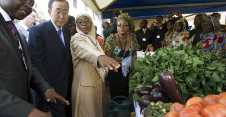 MDG 1: Eradicate Extreme Poverty And Hunger Sub-Saharan Africa Lags Behind