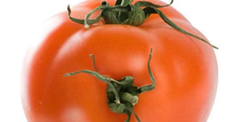 Food Sovereignty Warns Against Corporate Seed Monopoly