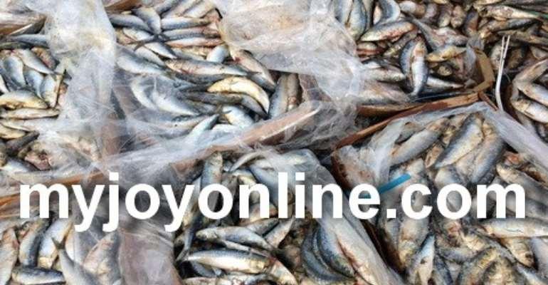 Health alert: Fishermen in Lower Axim use DDT for fishing