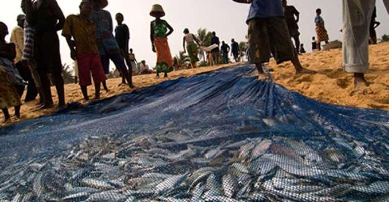 EU sanction looms over Ghana's fishing industry
