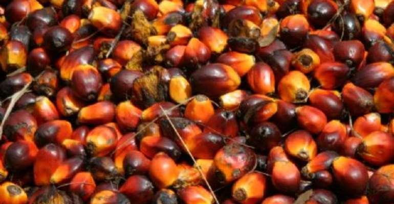 Tigo Empowers Women In Aboasa With An Oil Palm Processing Machine