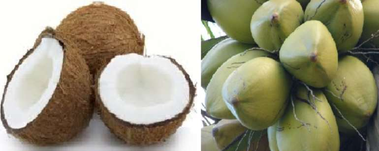 Can The Production Of Ecocoboards From Waste Coconut Husks Replace Cocoa As Ghana's Biggest Foreign Exchange Earner?