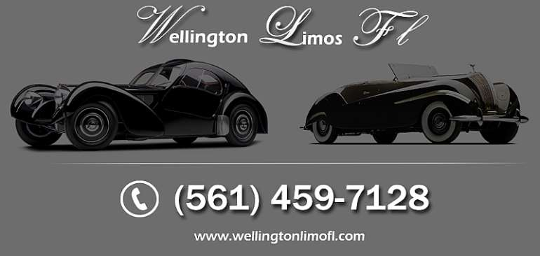Airport limousine  Car Service in South Florida Brought To You by WLSF.