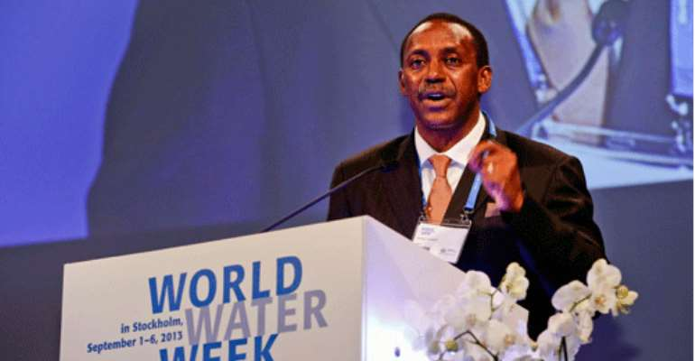World Water Week 2013 Climaxed