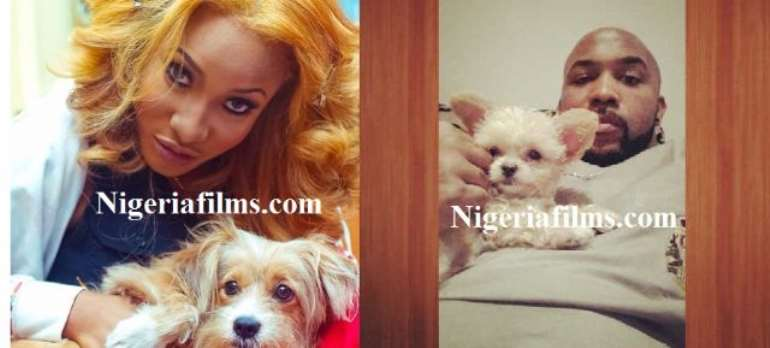 NIGERIAN CELEBS AND DOGS: WHO HAS THE CUTEST?