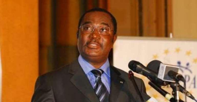 Togo making democratic gains - Prime Minister