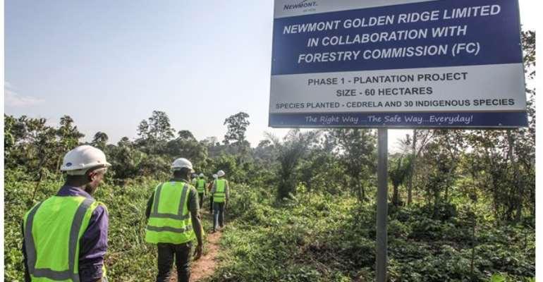 Newmont Ghana embarks on massive reforestation programme