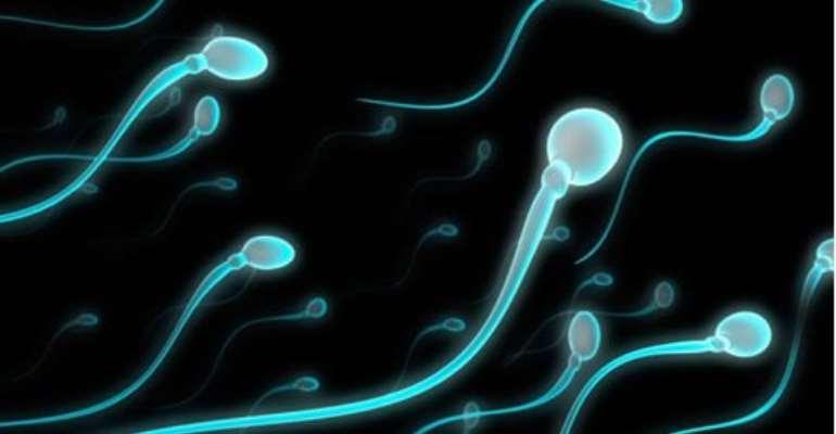 Sperm, ovary sale to be regulated