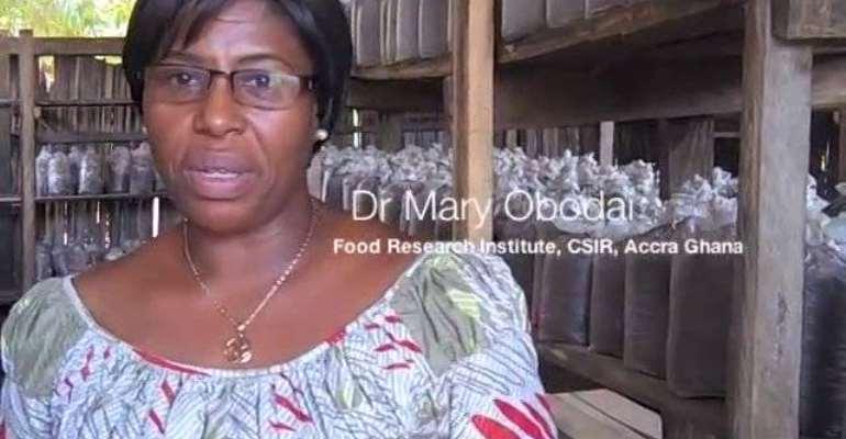 Dr. Mary Obodai