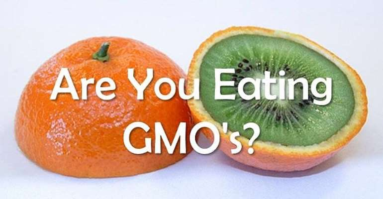 THE DEBATE ON GENETICALLY MODIFIED FOOD
