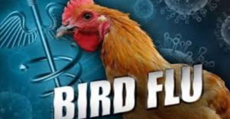 Ministry takes measures to contain Bird Flu