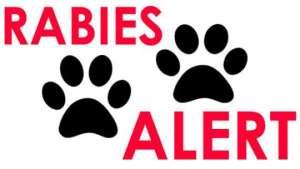 Organisations And Individuals Urged To Join In Fight Against Rabies