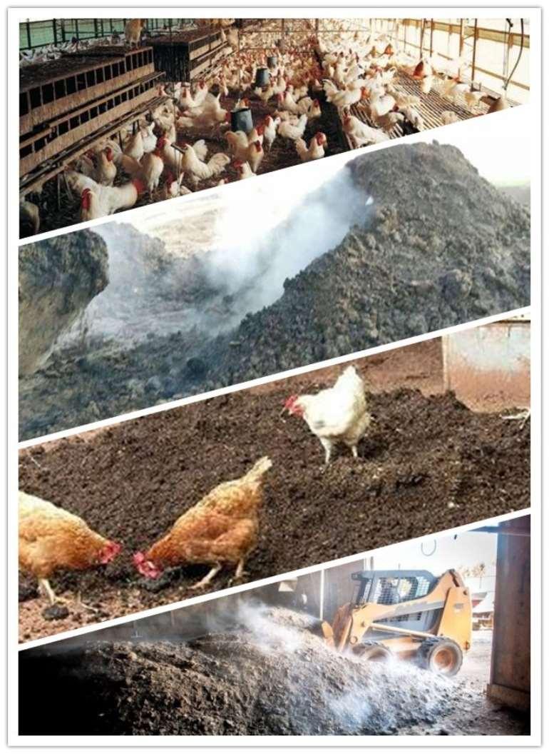 1025201751914 chickenfarmmanure