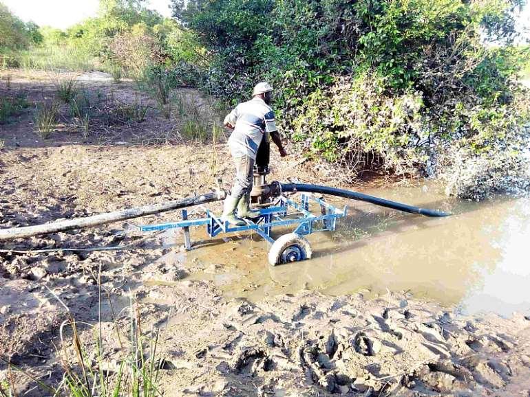 1119201854017 vaqdthfssn mr aboubaka iddrisu using the solar pumps to irrigate his crops
