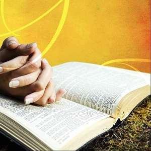 WordDigest: Internalise God's word
