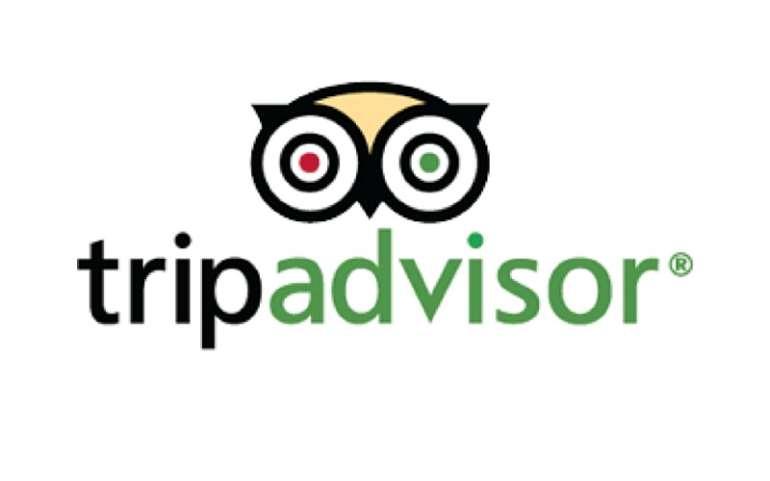 1123201662403 tripadvisor logo