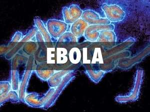 The Making Of Ebola In Russia  And How The Disease Has Come To Stay In Africa