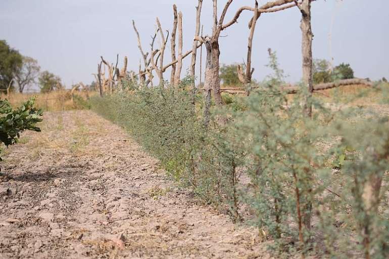 1272019123649-uypcsgerrm-soil-health-2